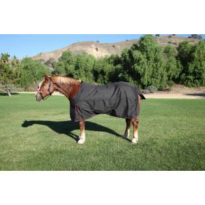Kensington All Around Medium Weight Turnout - Draft