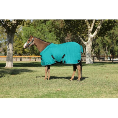 Kensington All Around Light Weight Turnout - Pony