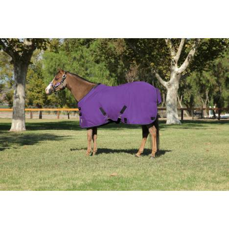 Kensington All Around Medium Weight Turnout - Pony