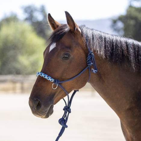 Kensington Rope Halter with Side Pull