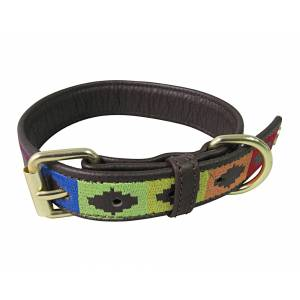 Halo Rainbow Leather Dog Collar