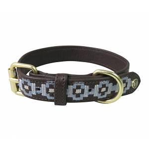 Halo Cam Leather Dog Collar