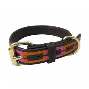 Halo Sam Leather Dog Collar