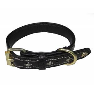 Halo Fleur de Lis Leather Dog Collar