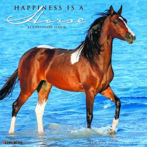 Kelley Happiness is a Horse 2019 Calendar, 18 Month