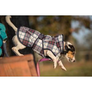 FITS Dog Coat - Navy/Red Plaid