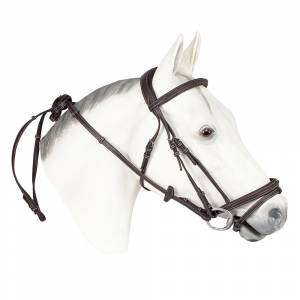 Henri De Rivel Kushy Leather Bridle With Flash Attachment