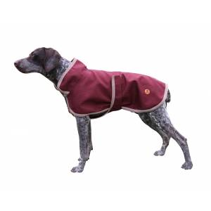 Halo Optima Dog Coat With Collar