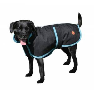 Halo Bonum Dog Coat With Collar