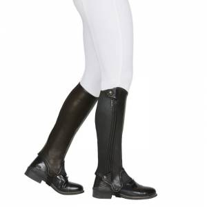 Dublin Evolution Side Zip Half Chaps - Adult
