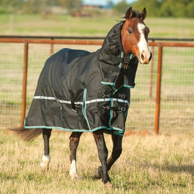 Classic Equine Windbreaker Sheet with Hood