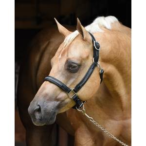 Perri's Chevron Bling Padded Leather Halter