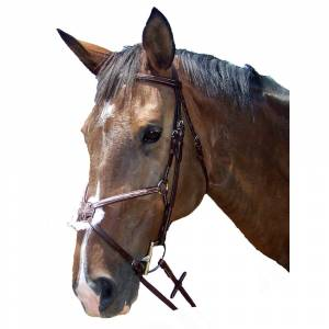 ProAm Fancy Raised Padded Figure 8 Bridle