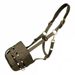 Best Friend Padded Leather Crown Grazing Muzzle