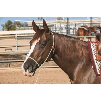 Schutz by Professionals Choice Training Halter
