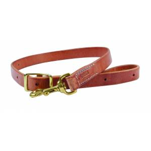 Schutz by Professionals Choice Tie Down with Brass Hardware