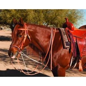Al Dunning by Professionals Choice Single Rein German Martingale