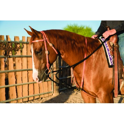 Al Dunning by Professionals Choice Draw Rein Martingale