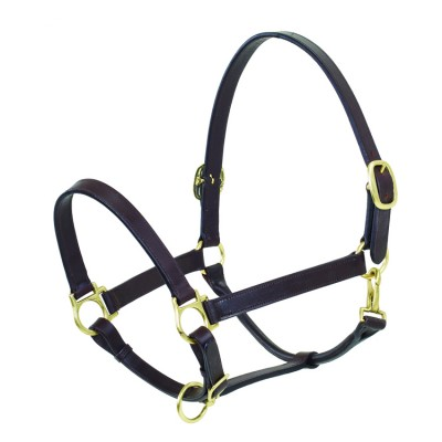 Ovation Elite Stable Halter