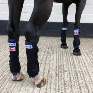 Cryochaps Quad- Set of 4-Horse