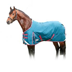 Weatherbeeta Comfitec Plus Dynamic Standard Neck Lite Turnout Blanket