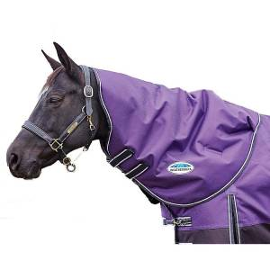 WEATHERBEETA COMFITEC PLUS DYNAMIC NECK BLANKET MEDIUM/LITE PURPLE/BLACK PONY