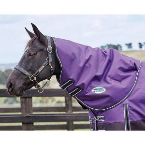 WEATHERBEETA COMFITEC PLUS DYNAMIC NECK BLANKET LITE PURPLE/BLACK PONY