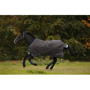 Amigo Bravo 12 Original Pony Turnout Blanket (0g Lite)