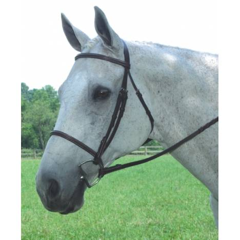Collegiate Collection Plain Raised Bridle with Reins