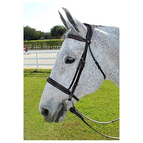 Henri De Rivel Pro Mono Crown Fancy Bridle