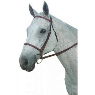 Kincade Plain Raised Bridle