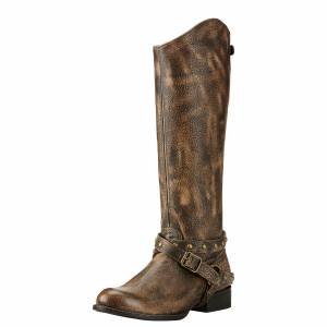 Ariat Manhattan - Ladies -  Brooklyn Brown