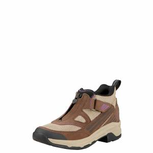 Ariat Women's Maxtrak UL Zip - Chocolate
