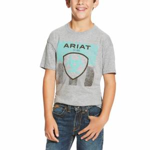 Ariat Boys Stars & Stripe Tee - Athletic Grey