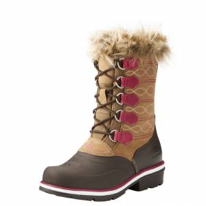 Ariat Whirlwind Frost H2O - Ladies - Espresso/Wicker