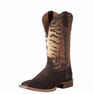 Ariat Circuit Stride - Mens - Chocolate Hippo Print/Tiger