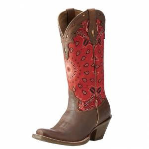 Ariat Circuit Cheynne - Ladies - Cattle Creek Brown/Red