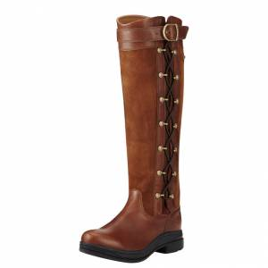 Ariat Grasmere Pro Gtx - Ladies - Briar