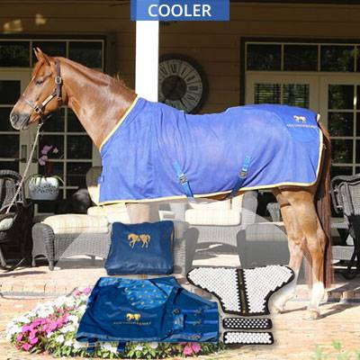 Acuswede Accuhorsemat Cooler Kit