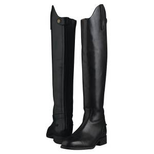Ariat Ladies Westchester Zip Tall Boots