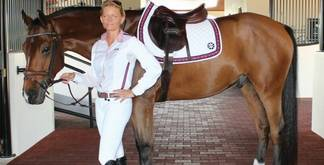 Equine Couture Stars & Stripes Collection