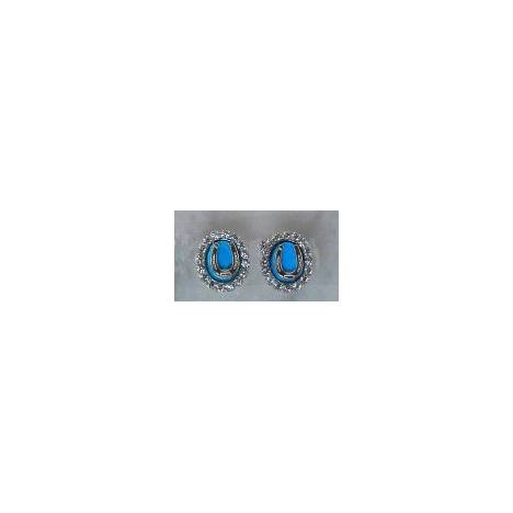 Finishing Touch Turquoise Howlite Oval Crystal Stone Frame with Horseshoe Earrings