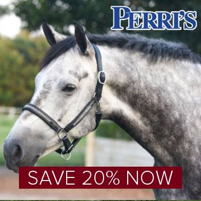 Save 20% on Perri's Leather
