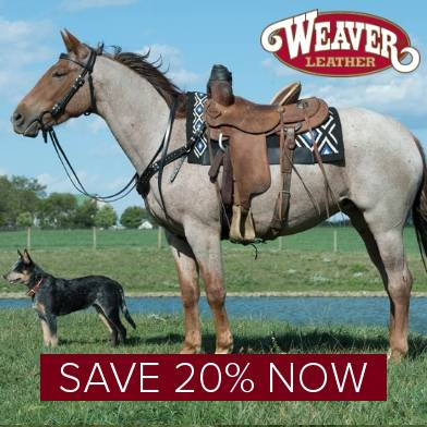 Save 20% on Weaver Leather