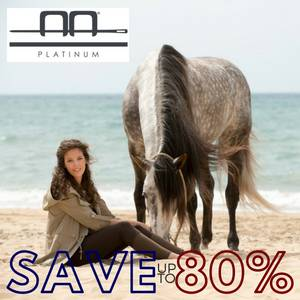 Save up to 80% on Alessandro Albanese