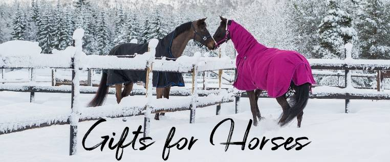 Horse Holiday Guide