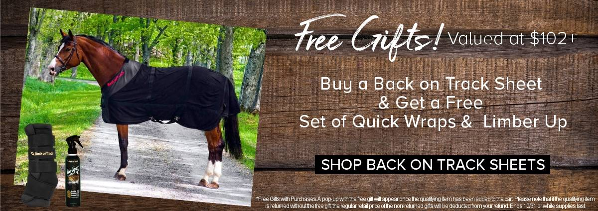 Free Gift with Back on Track Sheets