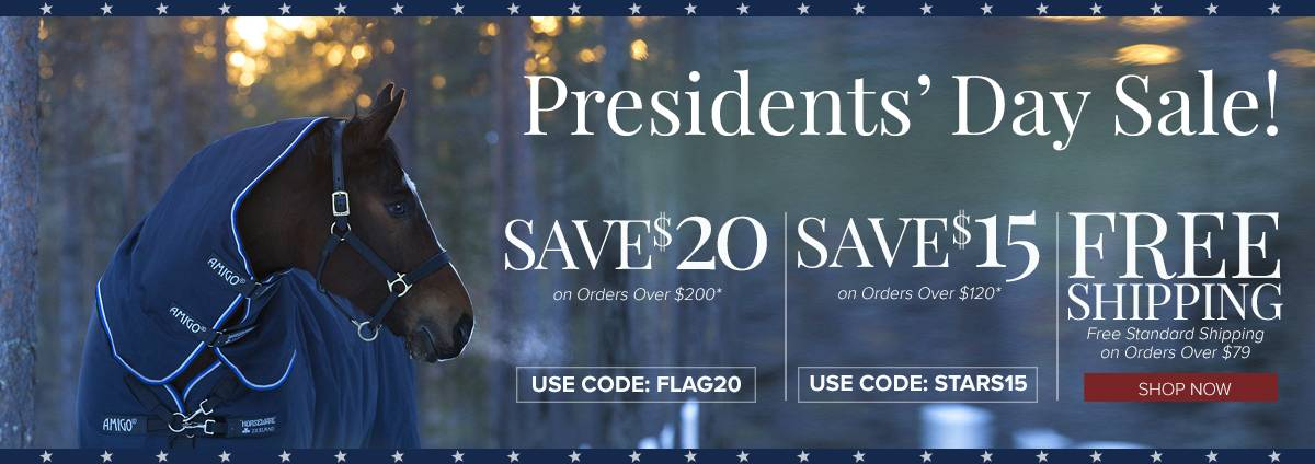 Shop Presidents Day Promotions