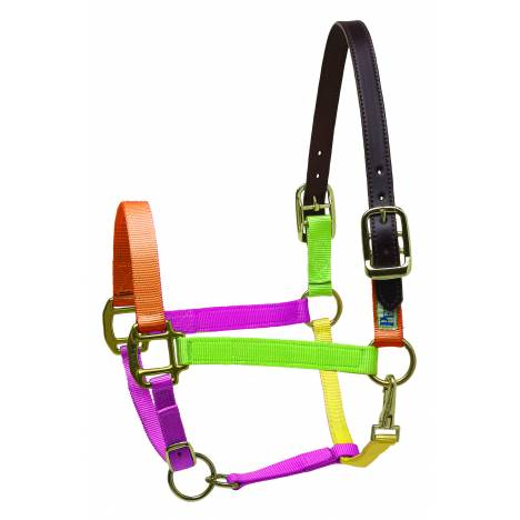 Perris Premium Nylon Safety Halter