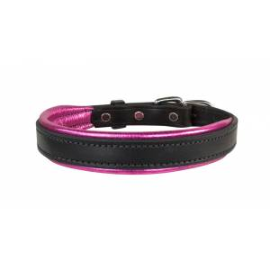 Perris Metallic Padded Leather Dog Collar
